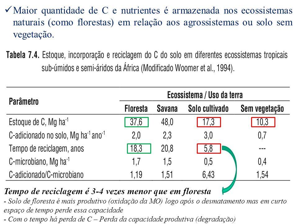 Maior quantidade de C e nutrientes é armazenada nos ecossistemas naturais (como florestas) em relação aos agrossistemas ou solo sem vegetação.