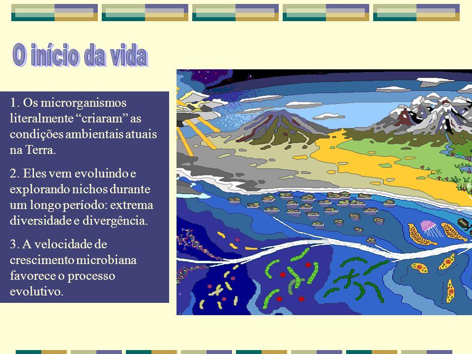 O início da vida 1. Os microrganismos literalmente criaram as condições ambientais atuais na Terra.
