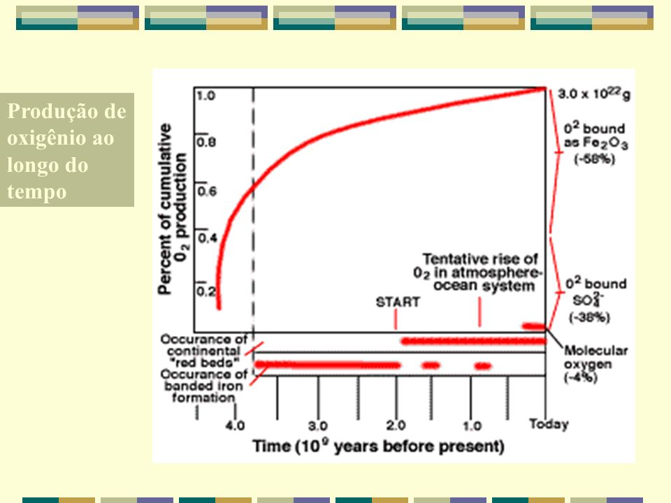 Produção de oxigênio ao longo do tempo