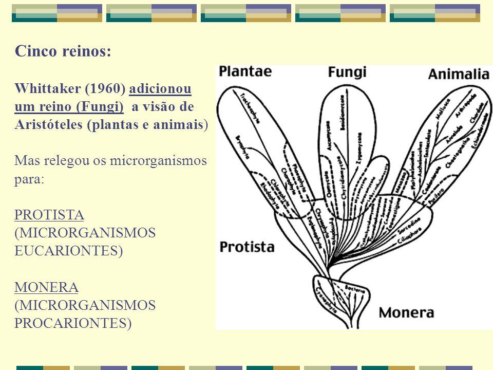 Cinco reinos: Whittaker (1960) adicionou um reino (Fungi) a visão de Aristóteles (plantas e animais)