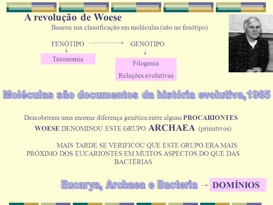 A revolução de Woese Baseou sua classificação em moléculas (não no fenótipo)