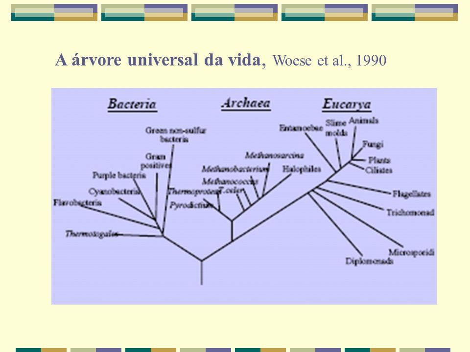 A árvore universal da vida, Woese et al., 1990