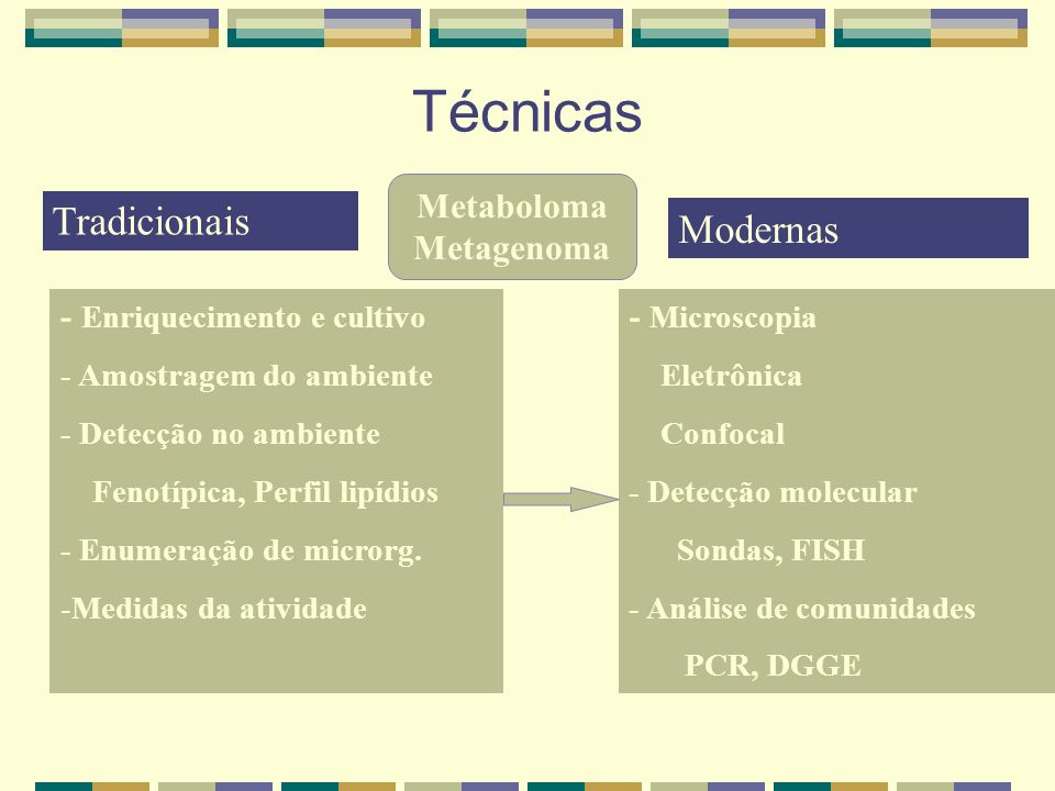 Técnicas Tradicionais Modernas Metaboloma Metagenoma