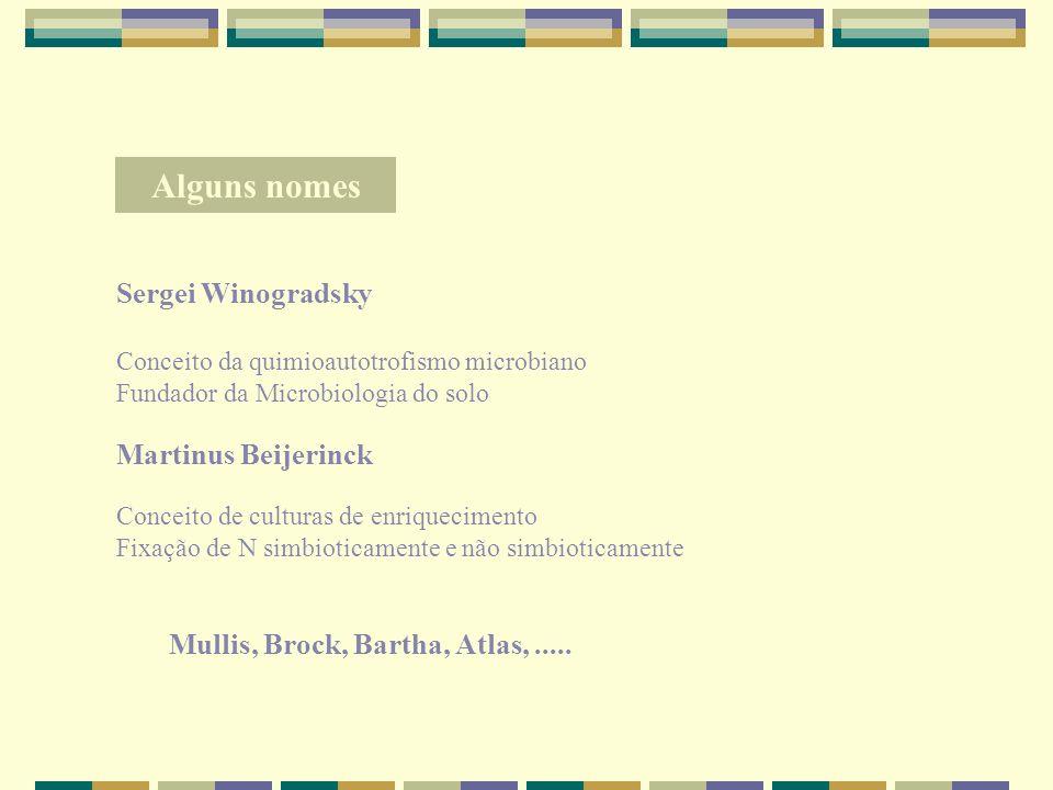Alguns nomes Sergei Winogradsky Martinus Beijerinck