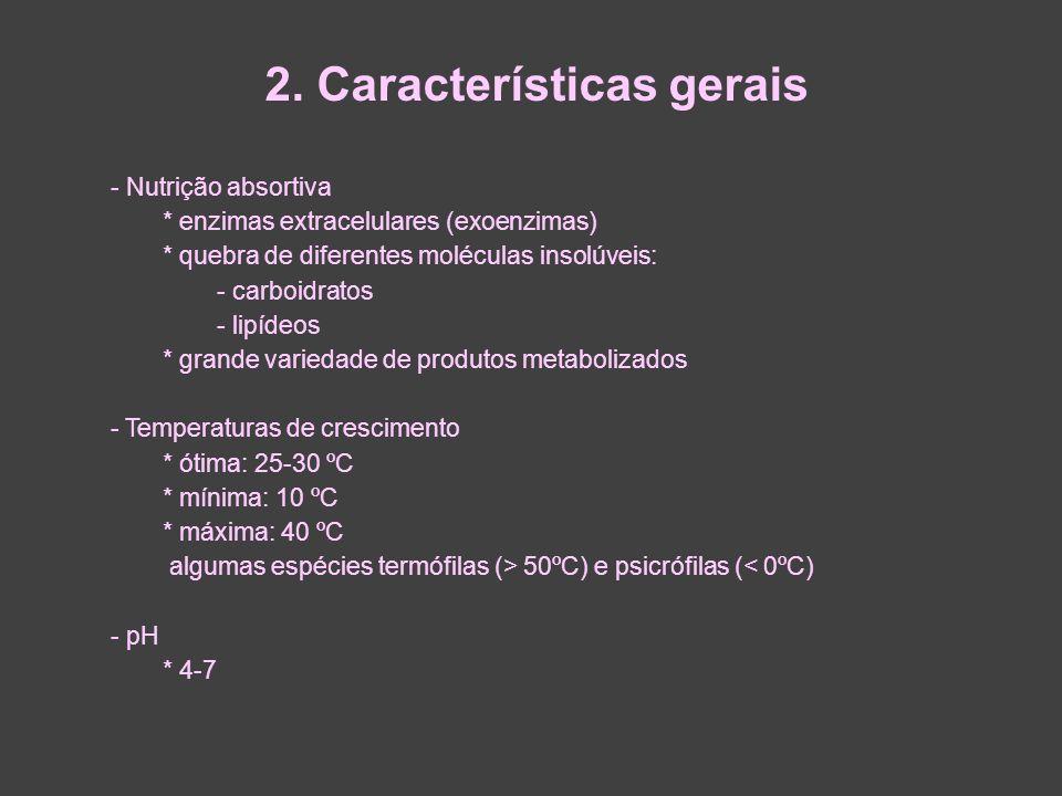 2. Características gerais