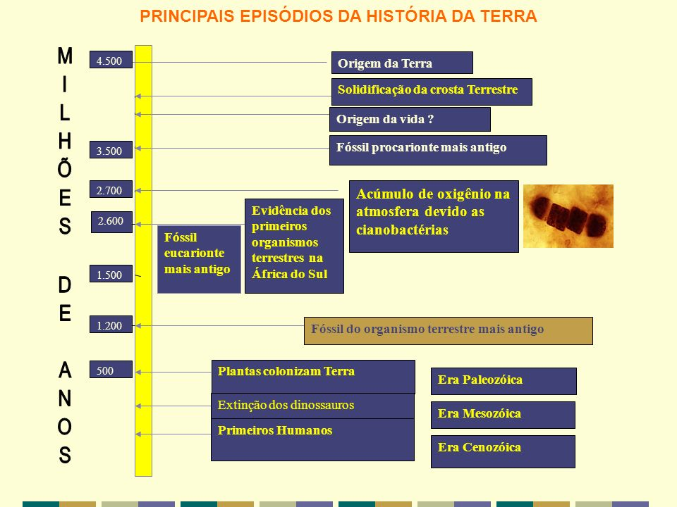 PRINCIPAIS EPISÓDIOS DA HISTÓRIA DA TERRA