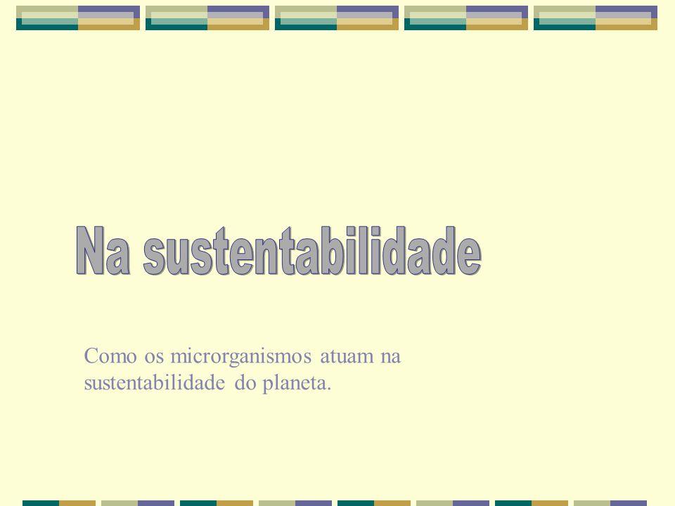 Na sustentabilidade Como os microrganismos atuam na sustentabilidade do planeta.