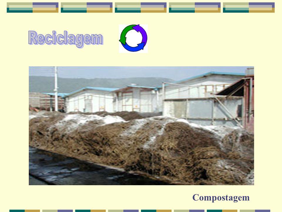 Reciclagem Compostagem
