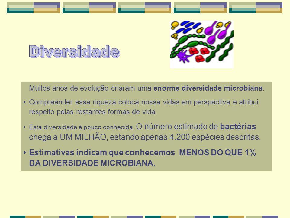 Diversidade Muitos anos de evolução criaram uma enorme diversidade microbiana.