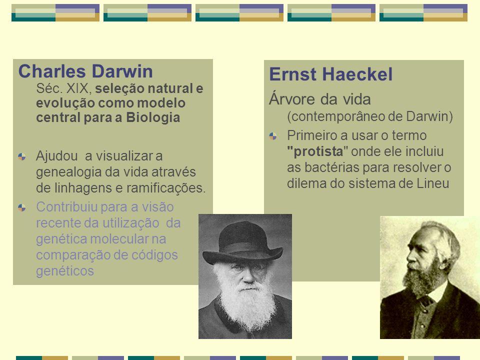 Charles Darwin Séc. XIX, seleção natural e evolução como modelo central para a Biologia