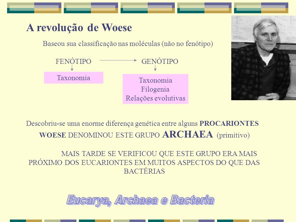 A revolução de Woese Eucarya, Archaea e Bacteria FENÓTIPO GENÓTIPO