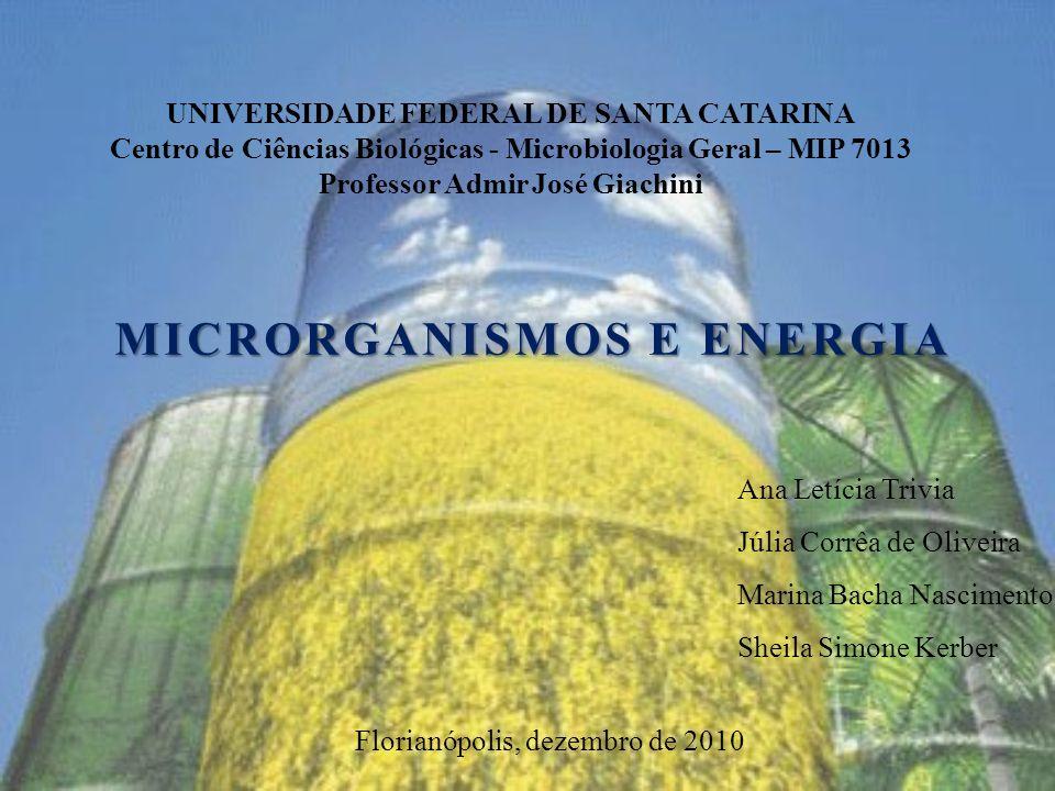MICRORGANISMOS E ENERGIA