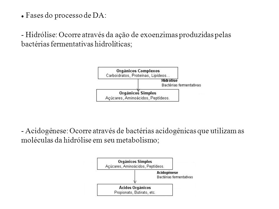 Fases do processo de DA: