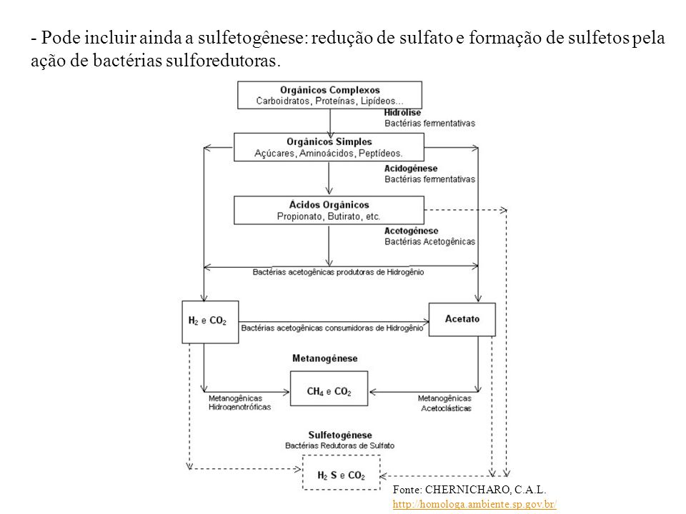 - Pode incluir ainda a sulfetogênese: redução de sulfato e formação de sulfetos pela ação de bactérias sulforedutoras.