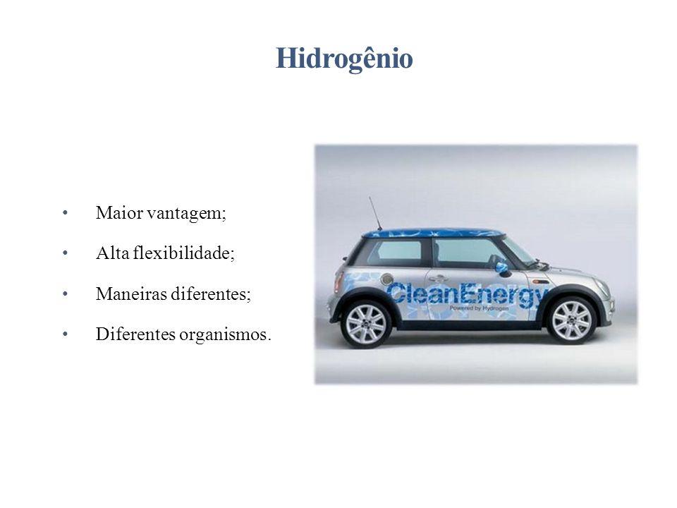 Hidrogênio Maior vantagem; Alta flexibilidade; Maneiras diferentes;
