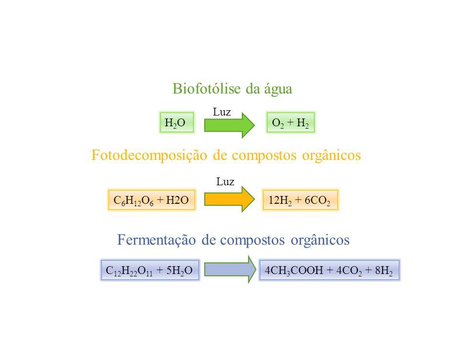 Fotodecomposição de compostos orgânicos