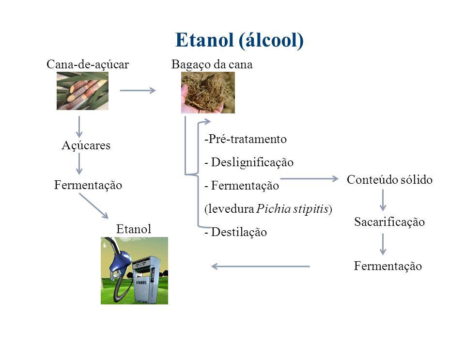Etanol (álcool) Cana-de-açúcar Bagaço da cana Pré-tratamento Açúcares
