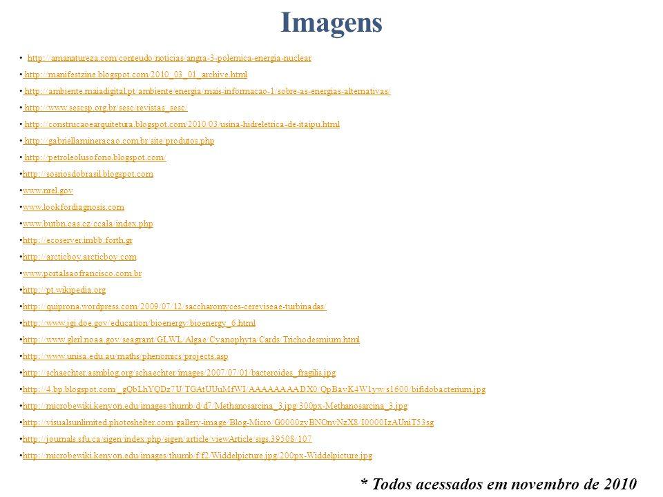 Imagens * Todos acessados em novembro de 2010