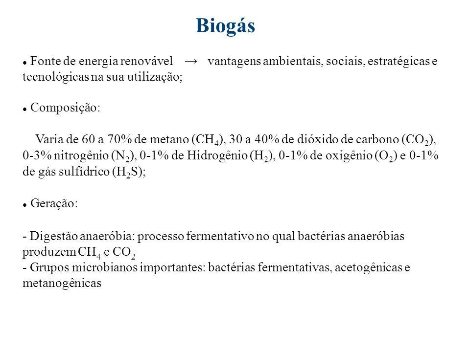 Biogás Fonte de energia renovável → vantagens ambientais, sociais, estratégicas e tecnológicas na sua utilização;