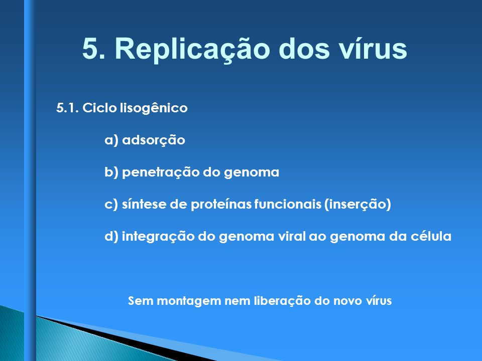 5. Replicação dos vírus 5.1. Ciclo lisogênico a) adsorção