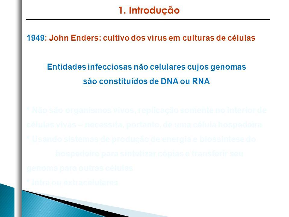1. Introdução 1949: John Enders: cultivo dos vírus em culturas de células. Entidades infecciosas não celulares cujos genomas.
