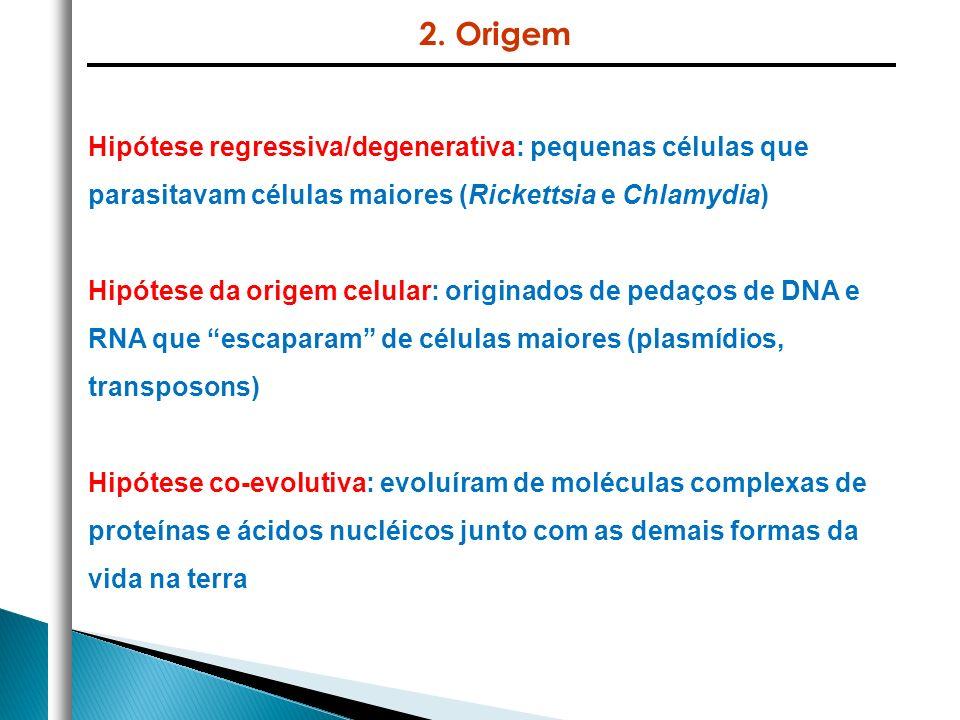 2. Origem Hipótese regressiva/degenerativa: pequenas células que parasitavam células maiores (Rickettsia e Chlamydia)