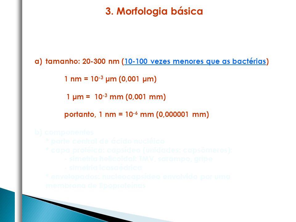3. Morfologia básica tamanho: 20-300 nm (10-100 vezes menores que as bactérias) 1 nm = 10-3 μm (0,001 μm)