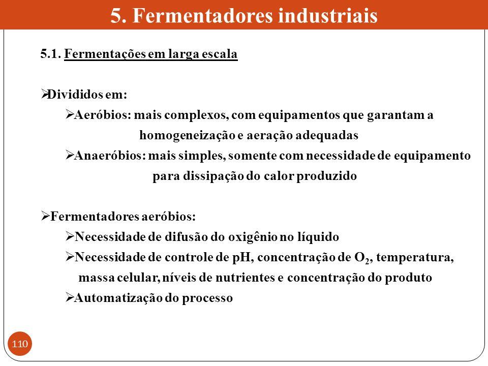 5. Fermentadores industriais