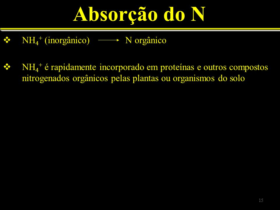 Absorção do N NH4+ (inorgânico) N orgânico