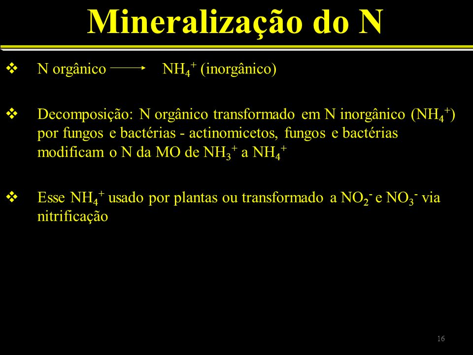 Mineralização do N N orgânico NH4+ (inorgânico)