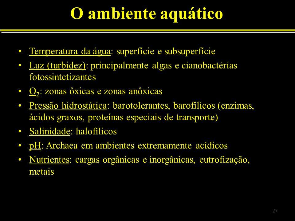 O ambiente aquático Temperatura da água: superfície e subsuperfície