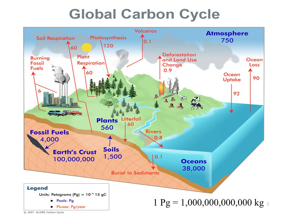 1 Pg = 1,000,000,000,000 kg