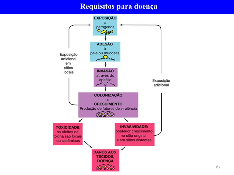 Requisitos para doença