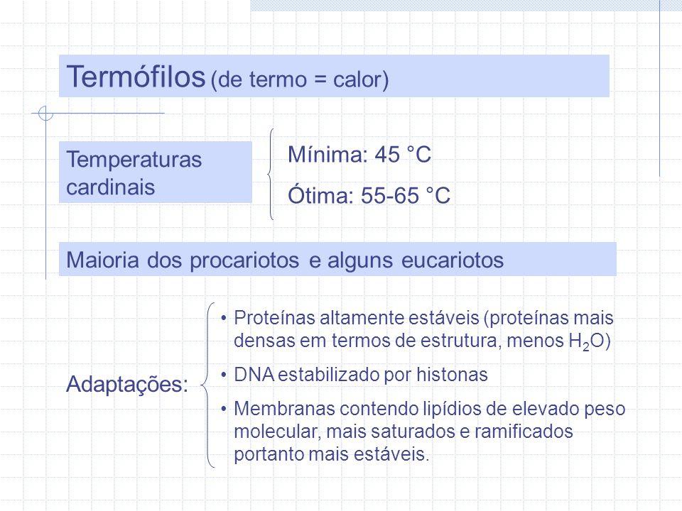Termófilos (de termo = calor)
