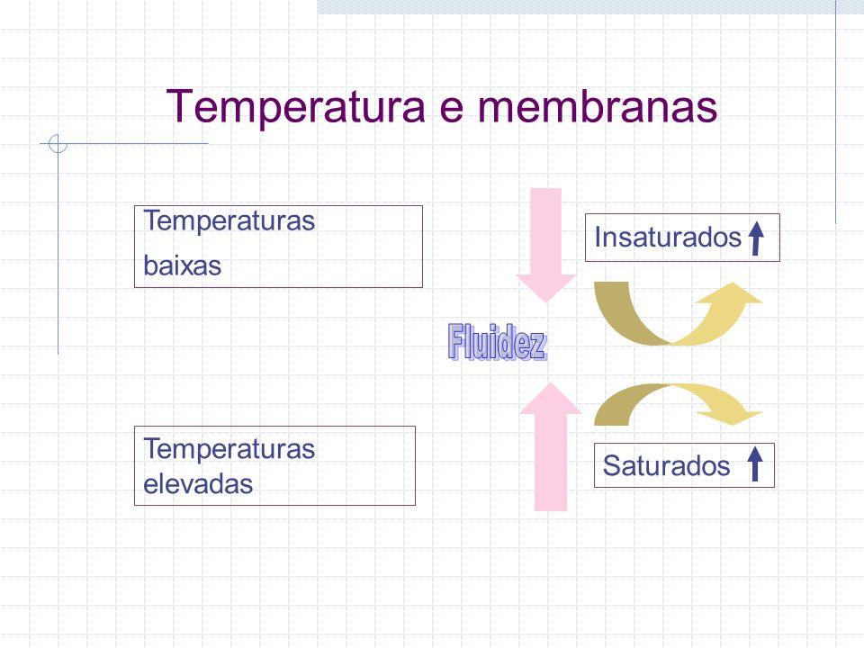Temperatura e membranas