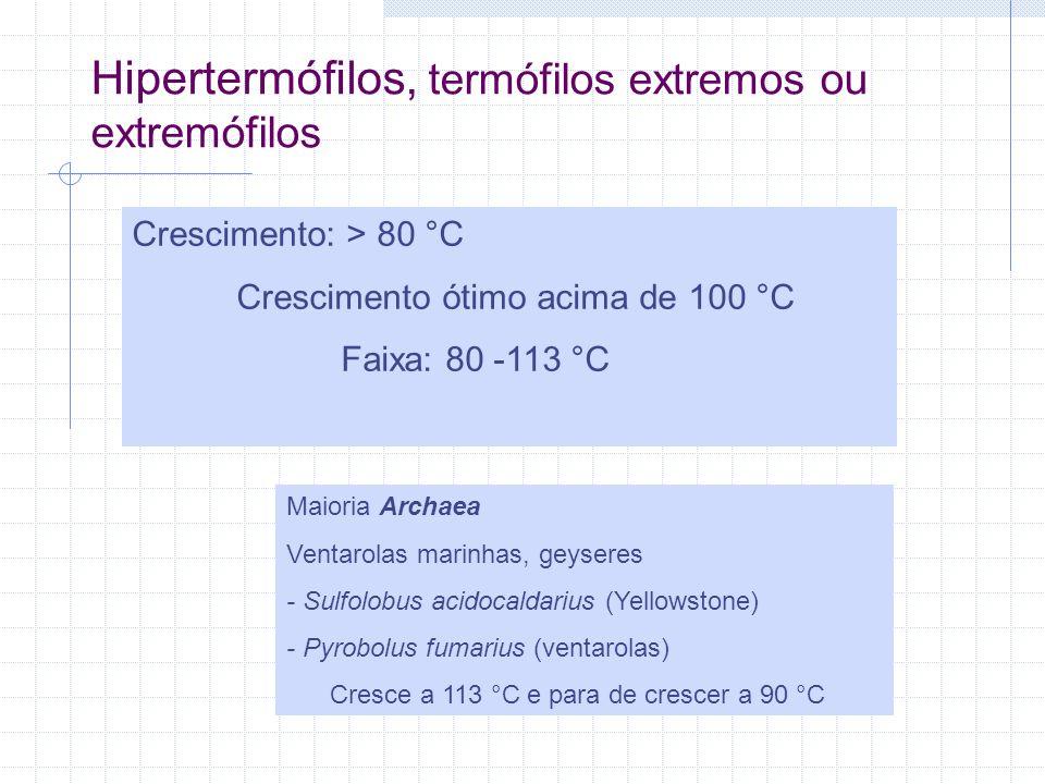 Hipertermófilos, termófilos extremos ou extremófilos