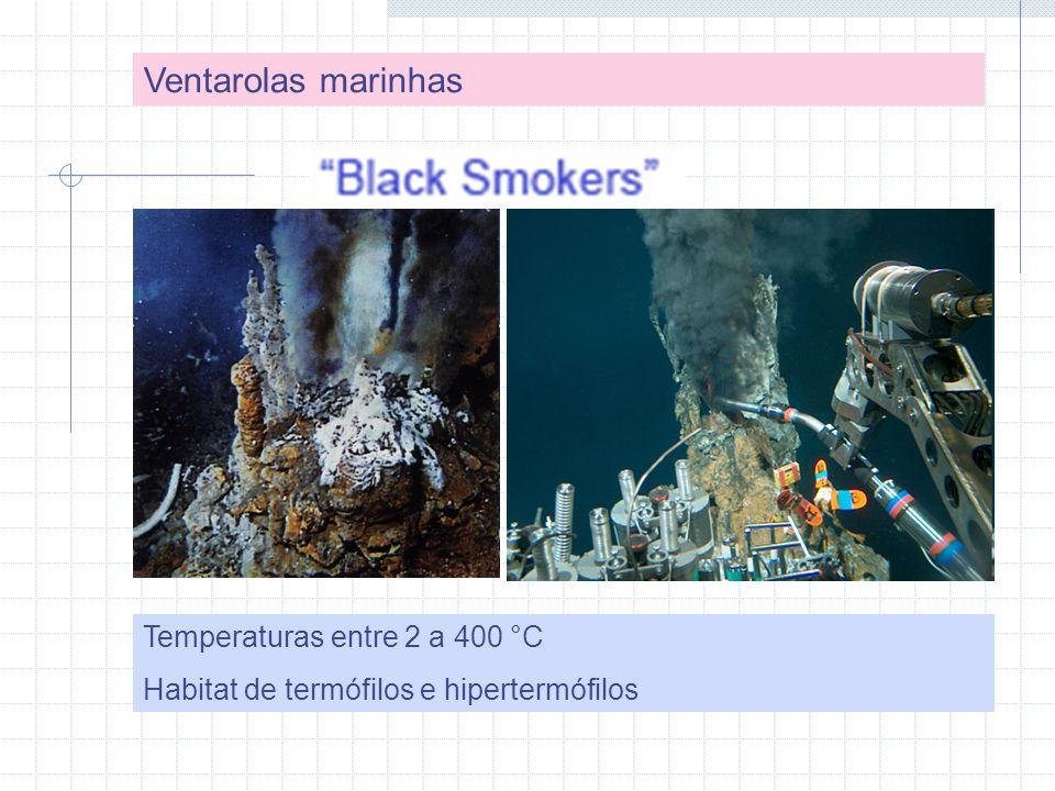 Ventarolas marinhas Temperaturas entre 2 a 400 °C