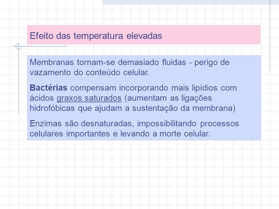 Efeito das temperatura elevadas