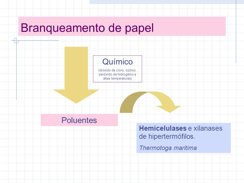 Branqueamento de papel