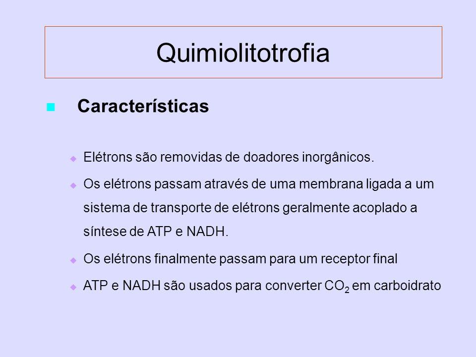 Quimiolitotrofia Características