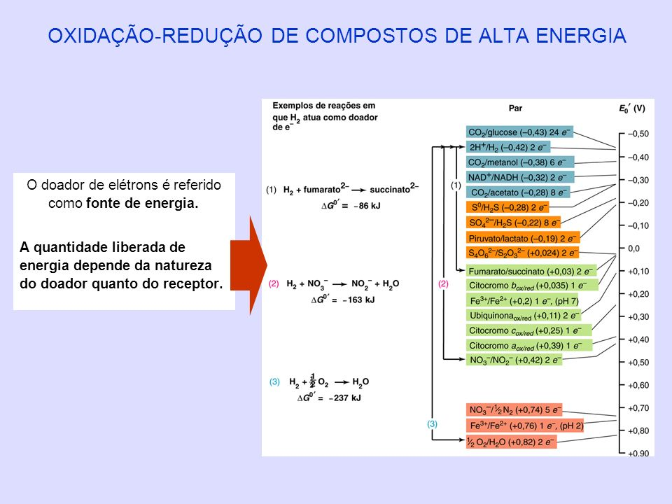 OXIDAÇÃO-REDUÇÃO DE COMPOSTOS DE ALTA ENERGIA