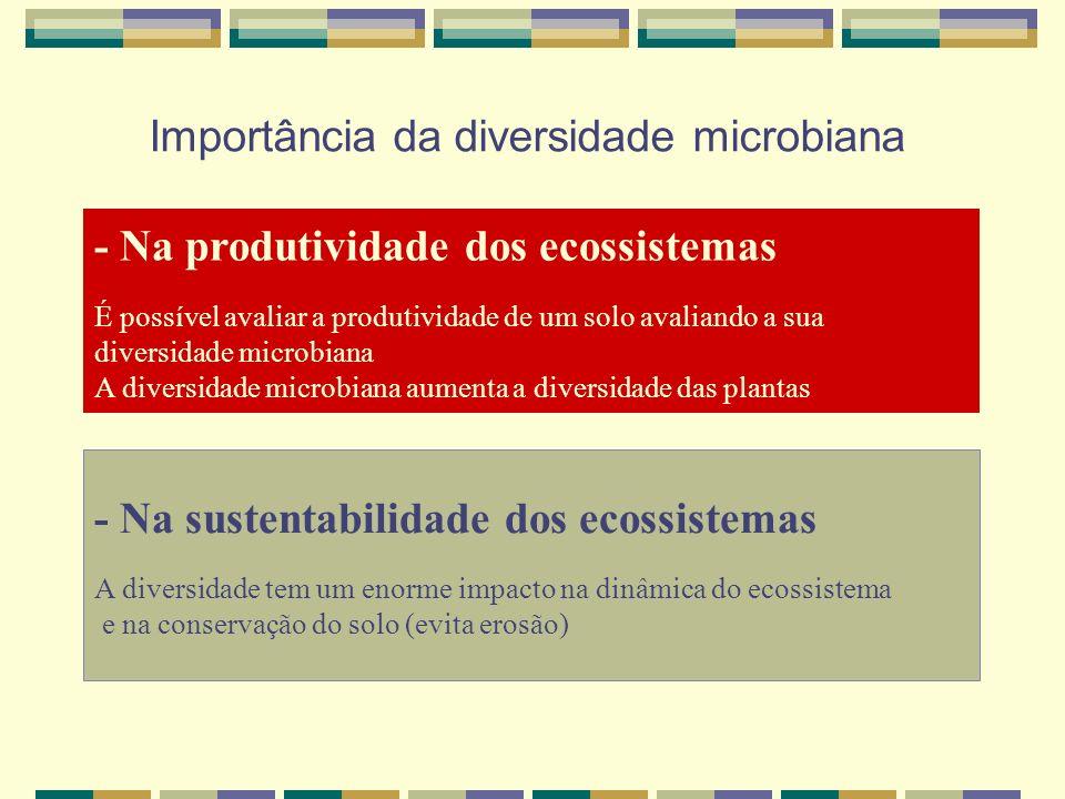 Importância da diversidade microbiana