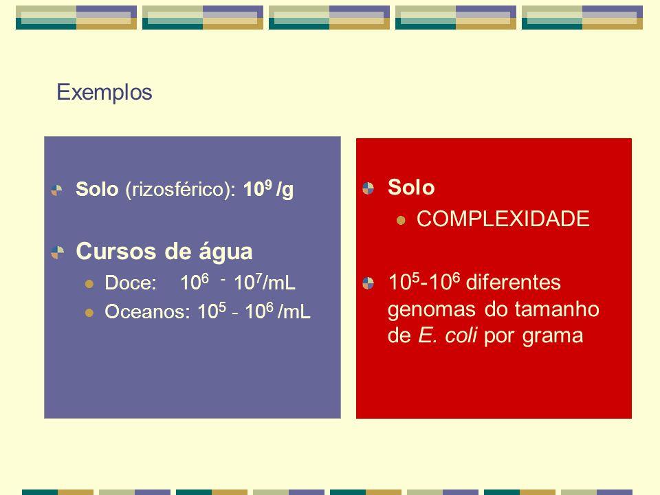 Cursos de água Exemplos Solo COMPLEXIDADE