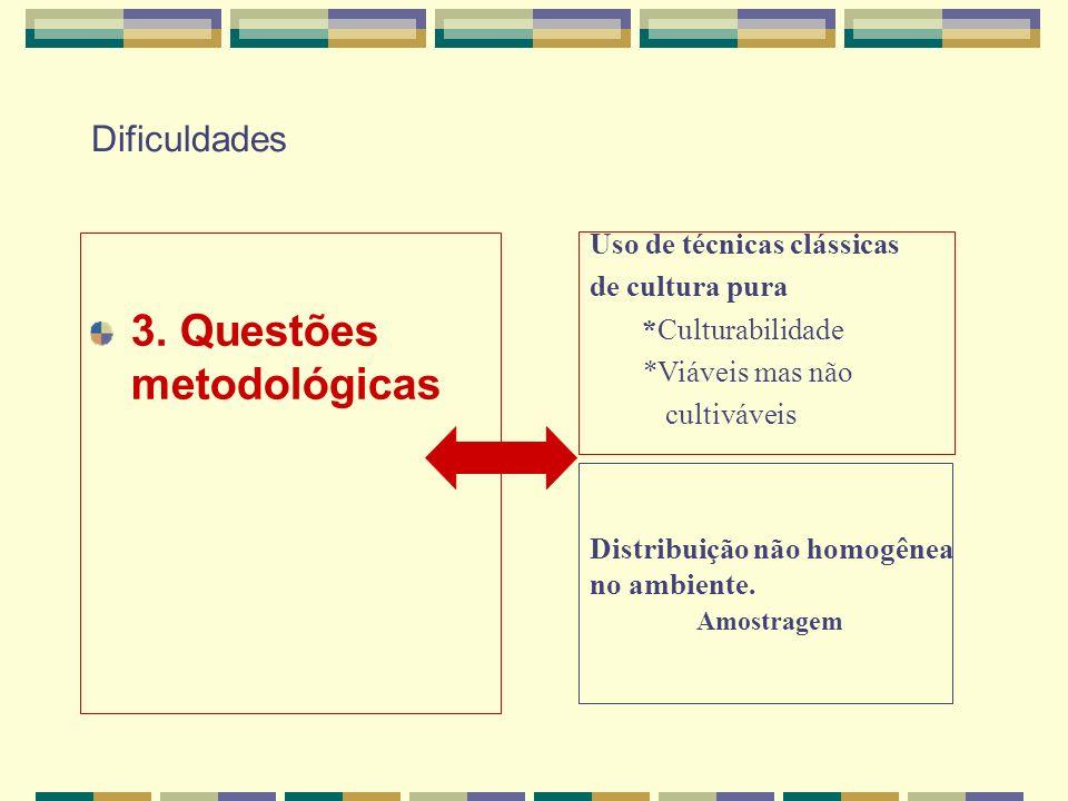 3. Questões metodológicas