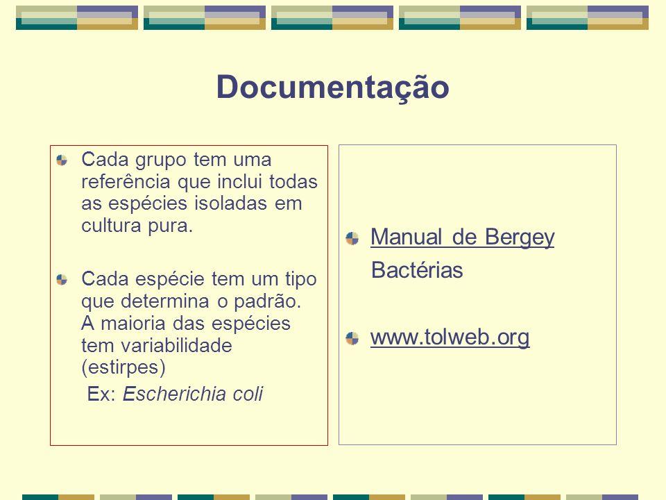 Documentação Manual de Bergey Bactérias www.tolweb.org