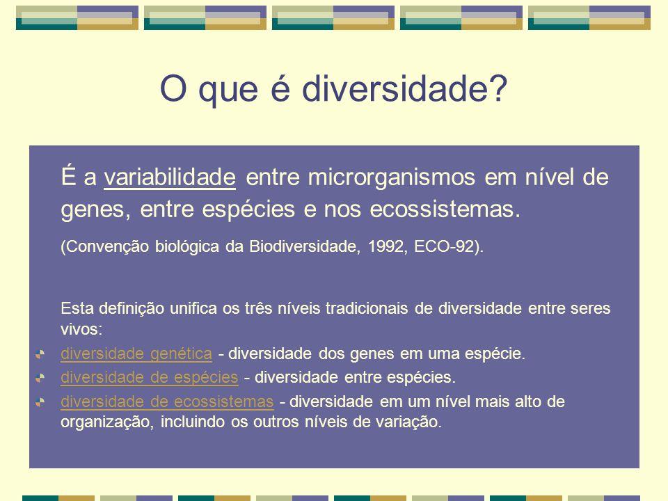 O que é diversidade É a variabilidade entre microrganismos em nível de genes, entre espécies e nos ecossistemas.