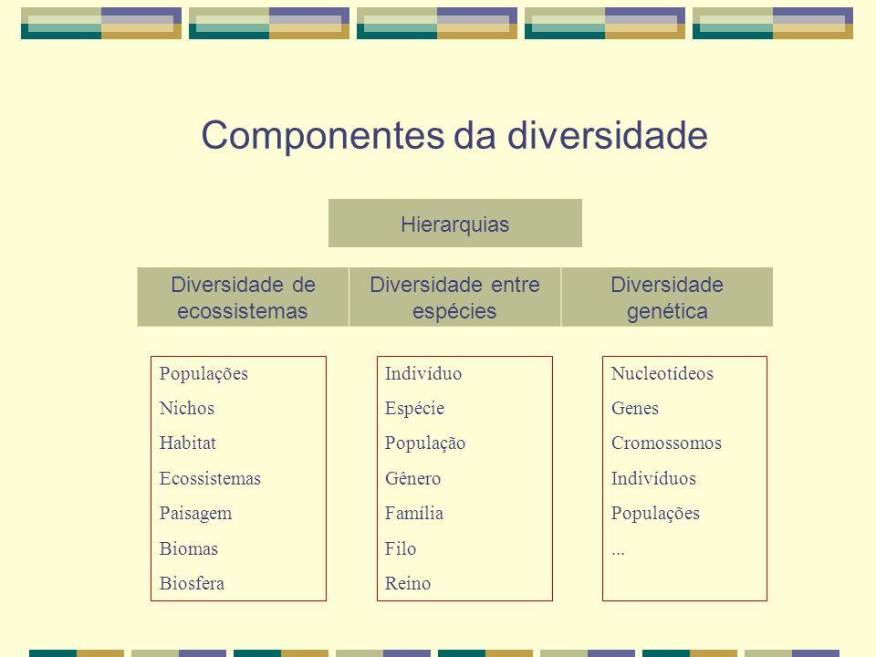 Componentes da diversidade