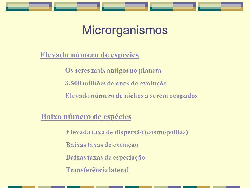 Microrganismos Elevado número de espécies