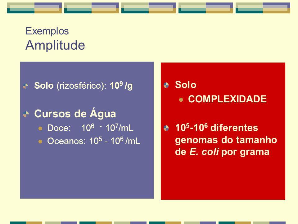 Cursos de Água Exemplos Amplitude Solo COMPLEXIDADE
