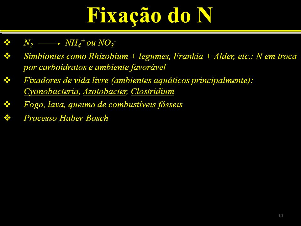 Fixação do N N2 NH4+ ou NO3-